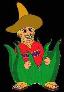 1. Amigos Mexican Cantina in Milford