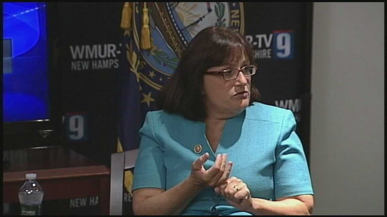Kuster faces challengers in 2nd District