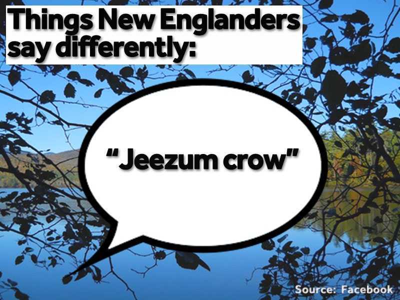 """""""Jeezum crow"""" is often used instead of """"holy cow"""" or """"oh my goodness."""""""