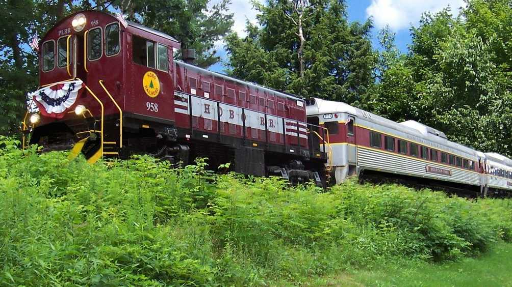 Hobo Train