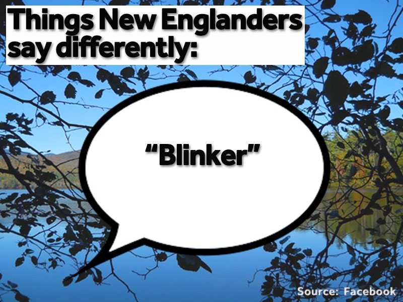 """We use our """"blinkers"""" or """"directionals"""" not """"turn signals."""""""