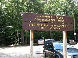 Bring your bike, tent, tube and towel for a beautiful pedal and a cool dip into the Pemigewasset River, on the piece of it stretching just north of Plymouth.