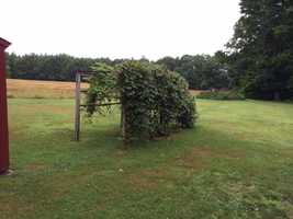 The four-bedroom house sits on 18-acres of land, including pastures and woods, with a pond in the back. The buyer can opt for a 7-acre parcel.