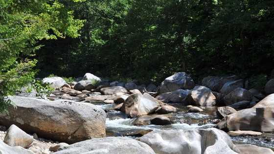 img-Ammonoosuc River generic.jpg