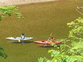 11 tie. Saco River