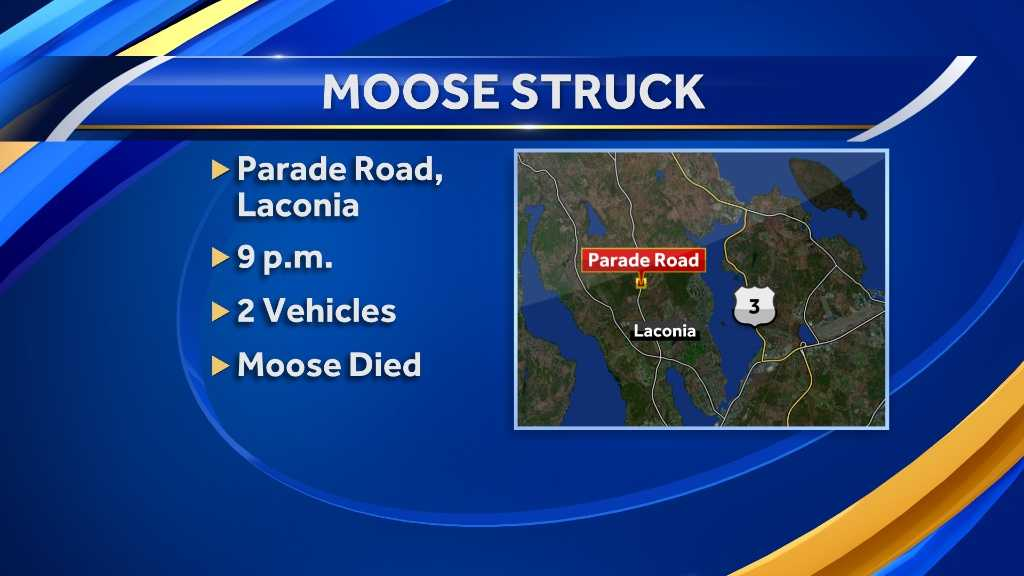 map-Laconia moose ax.jpg