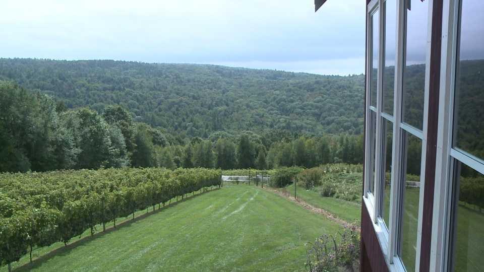 Walpole Winery