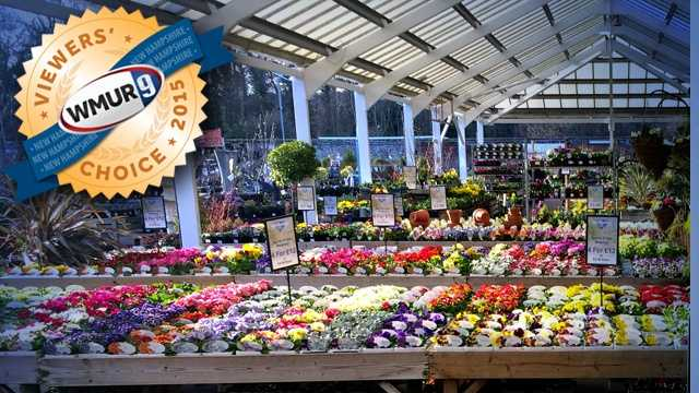 With warm weather (hopefully) around the corner, we asked our viewers where to find the best garden center in the Granite State. Take a look at the top responses!