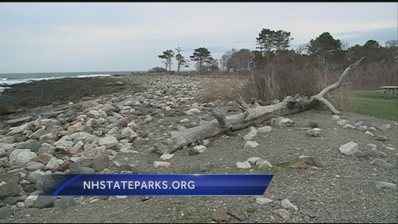Meteorologist Kevin Skarupa visited Odiorne Point State Park in Rye on Wednesday morning.