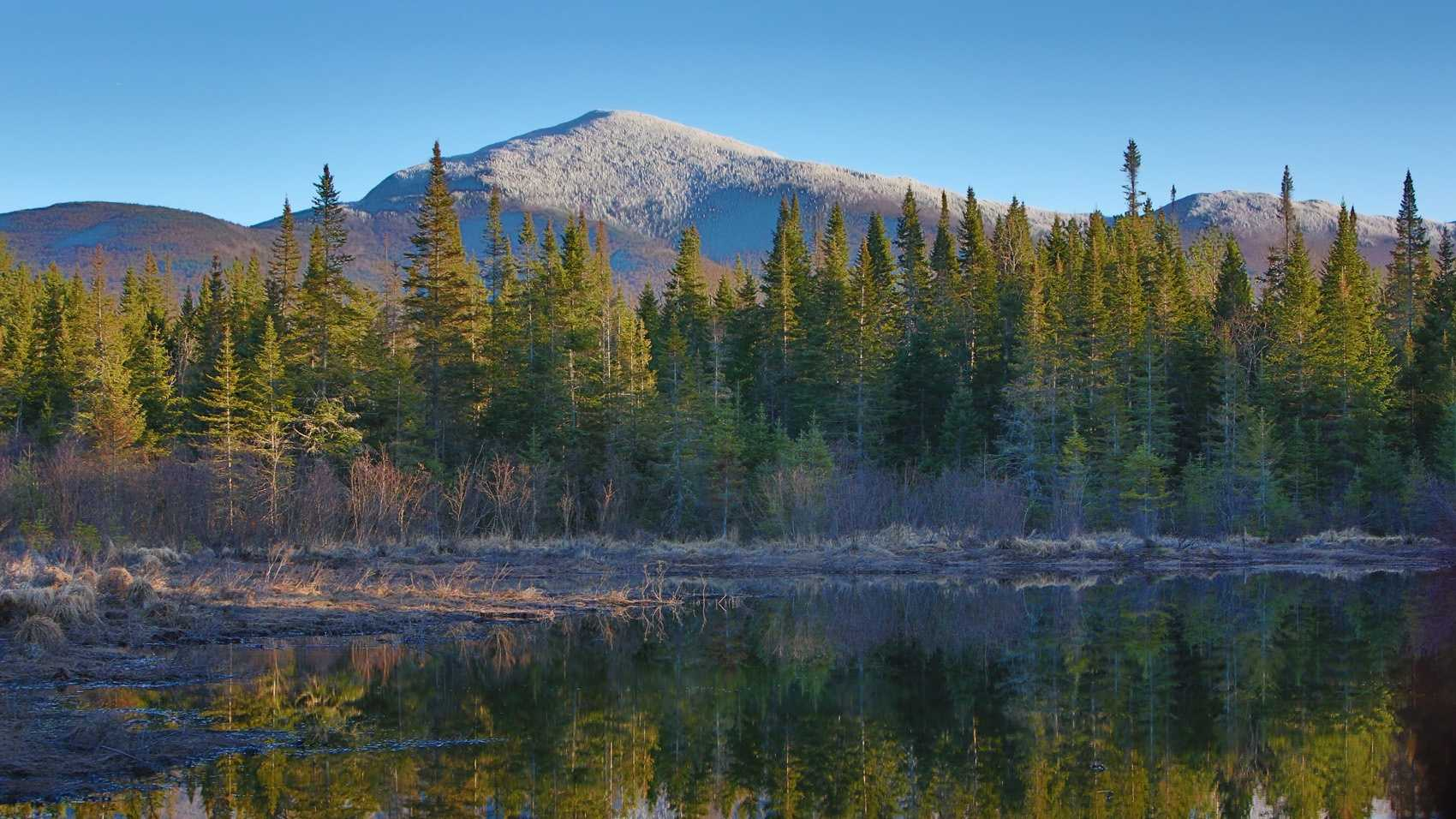 New Hampshire has so many outdoor activities to offer. See where your county ranks in terms of air quality, weather and access to things like parks, forests and equipment rentals.For full methodology, visit Niche.com.
