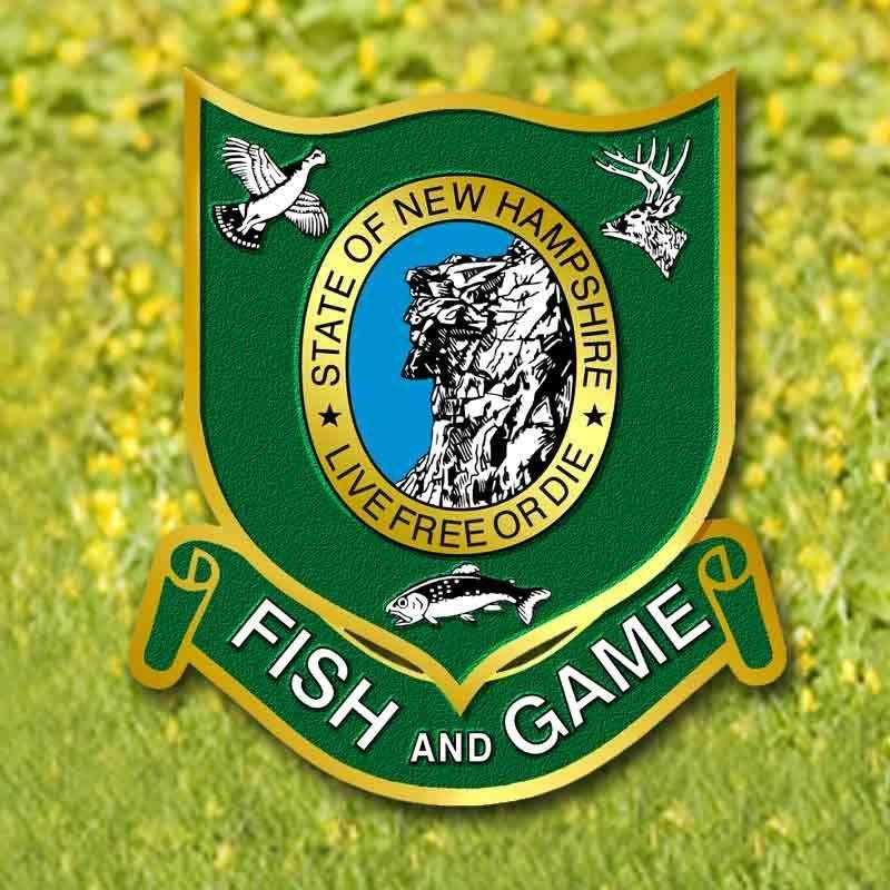 nh fish and game newborn lifetime license gamesworld