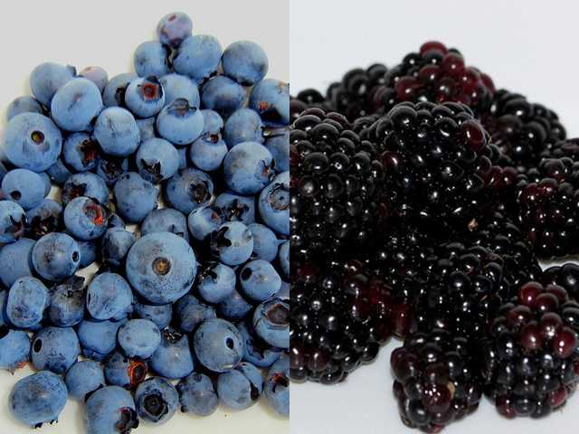 Locally harvested fruits, like blueberries and blackberries.