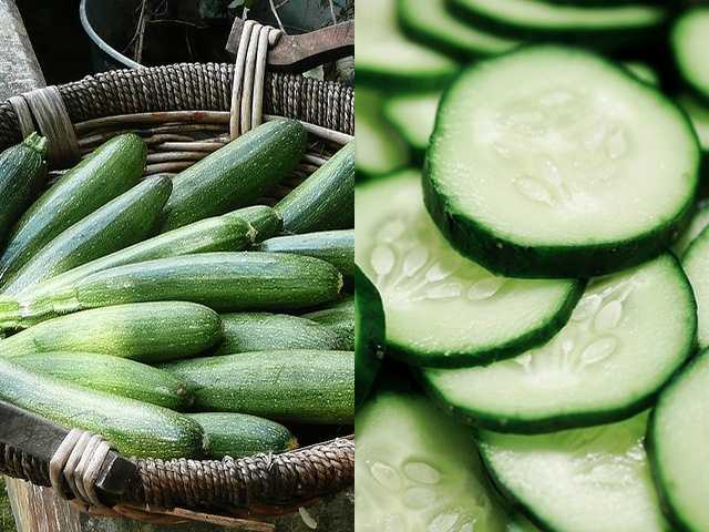 Locally harvested vegetables, like zucchini and cucumbers.