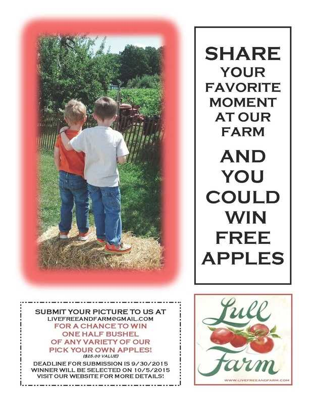 11) Lull Farm in Hollis and Milford