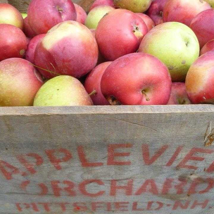 2. Appleview Orchard in Pittsfield