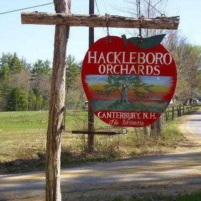 12 tie. Hackleboro Orchards in Canterbury
