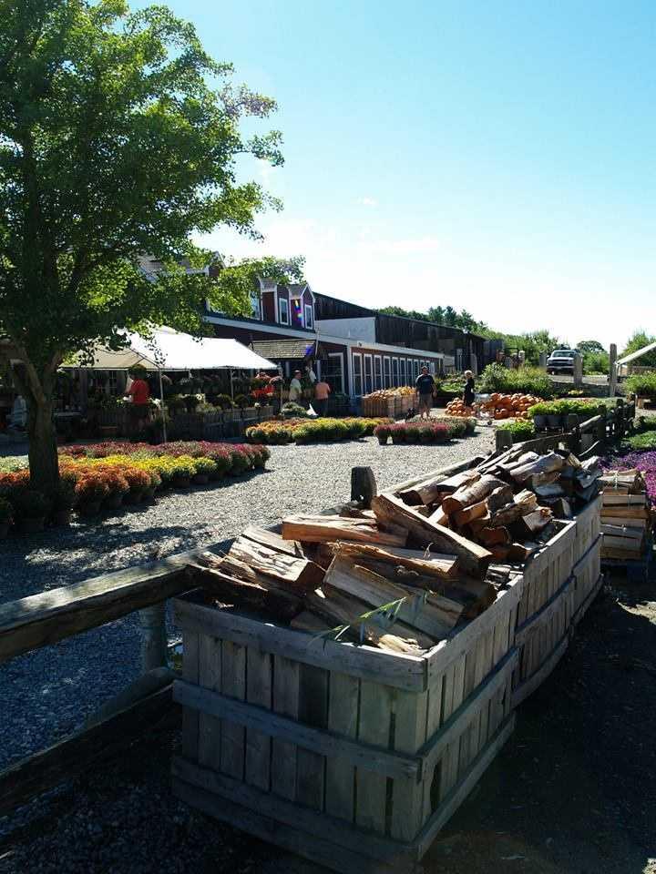9 tie. Lull Farm in Hollis