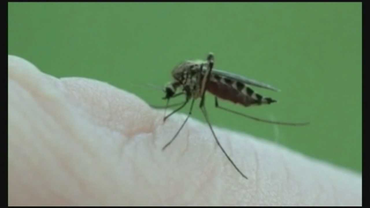 A mosquito pool in New Hampshire has tested positive for West Nile virus.