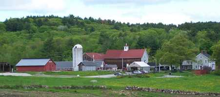 5. Beech Hill Farm and Ice Cream Barn in Hopkinton