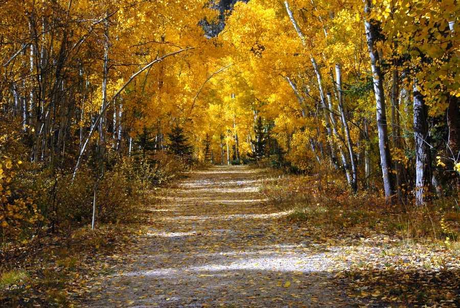 3. Aspen, Colorado