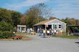 11 tie. Butternut Farm in Farmington