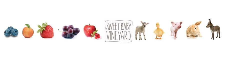1. Sweet Baby Vineyard in Hampstead