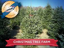 This week, we asked our viewers where to find the best Christmas tree farms in the Granite State. Take a look at the top responses!