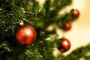 7 tie. Dave's Christmas Tree Farm in Madbury