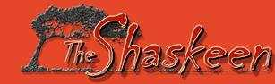 5. The Shaskeen in Manchester