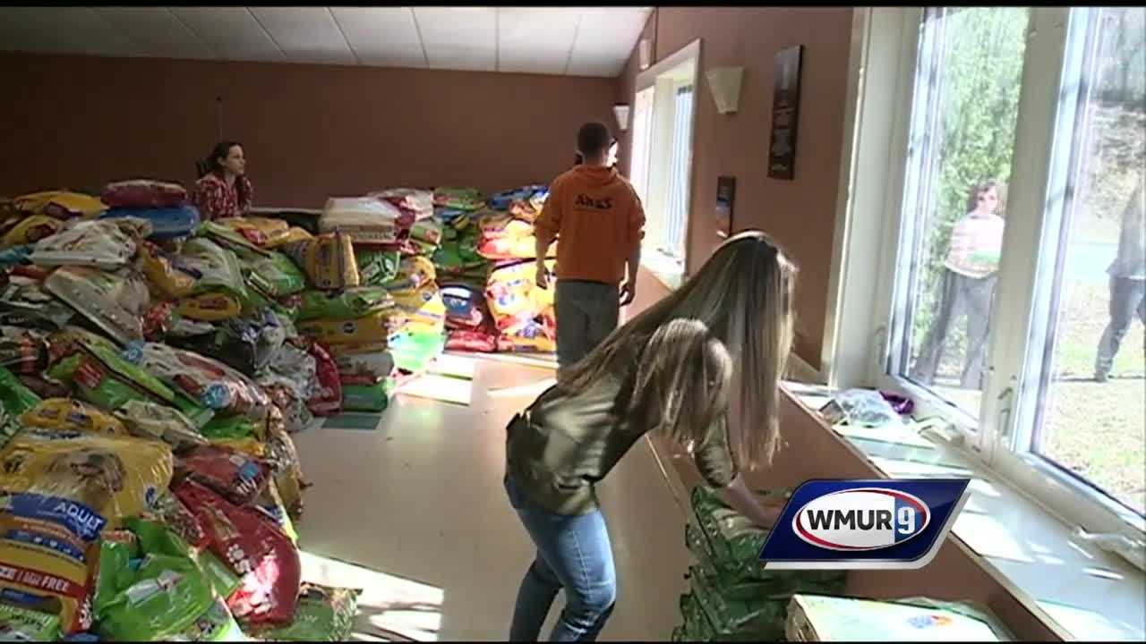 The Animal Rescue League of New Hampshire is dealing with more food than they can handle after donations poured in after a thief broke into the shelter and stole 500 pounds of food.
