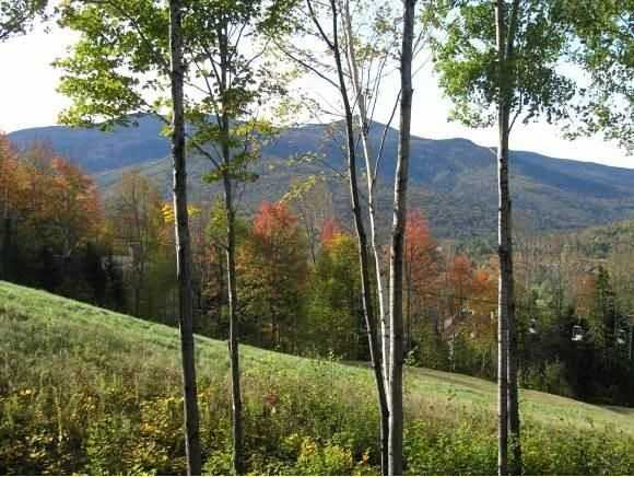 The home is located next to White Mountain National Forest and has tremendous views of the White Mountains.