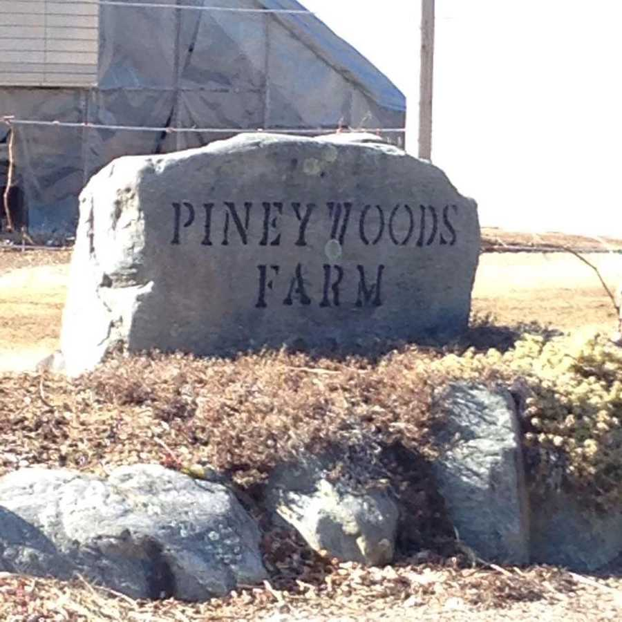 T-7. Piney Woods Farm in Deerfield