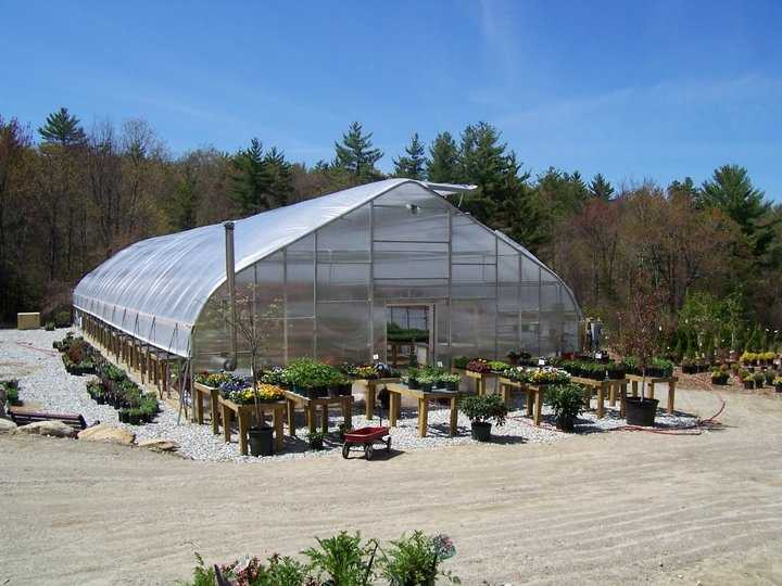 T-10. Mason Brook Nursery in Mason