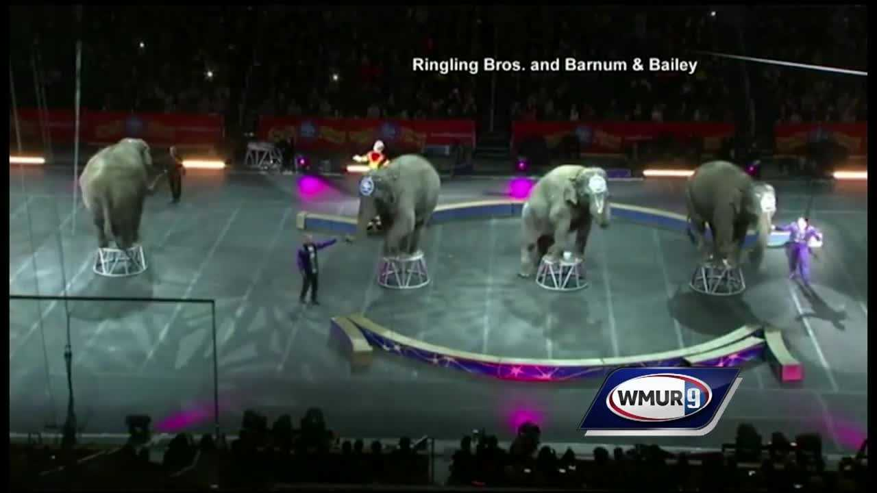 The Ringling Brothers and Barnum and Bailey Circus performed in Manchester this week for the first time since it pulled elephants from its show. However, animal rights activists protested outside of a show Saturday, arguing that the circus needs to do more.