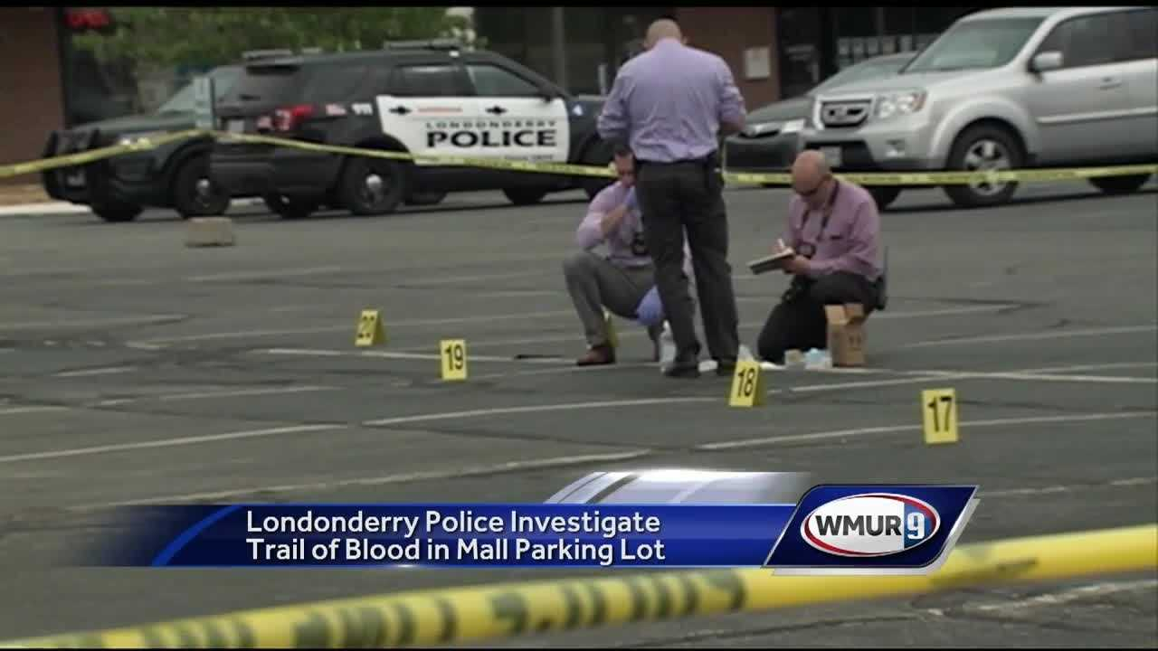 The Crossroads Mall parking lot was turned into a potential major crime scene on Friday, as police try to figure out the source of a pool of blood.