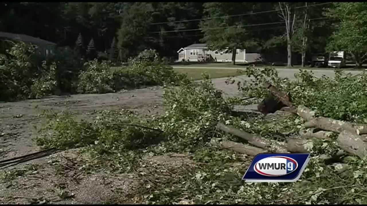 The National Weather Service confirmed Tuesday that a microburst was responsible for bringing down trees and power lines Monday in Plaistow.