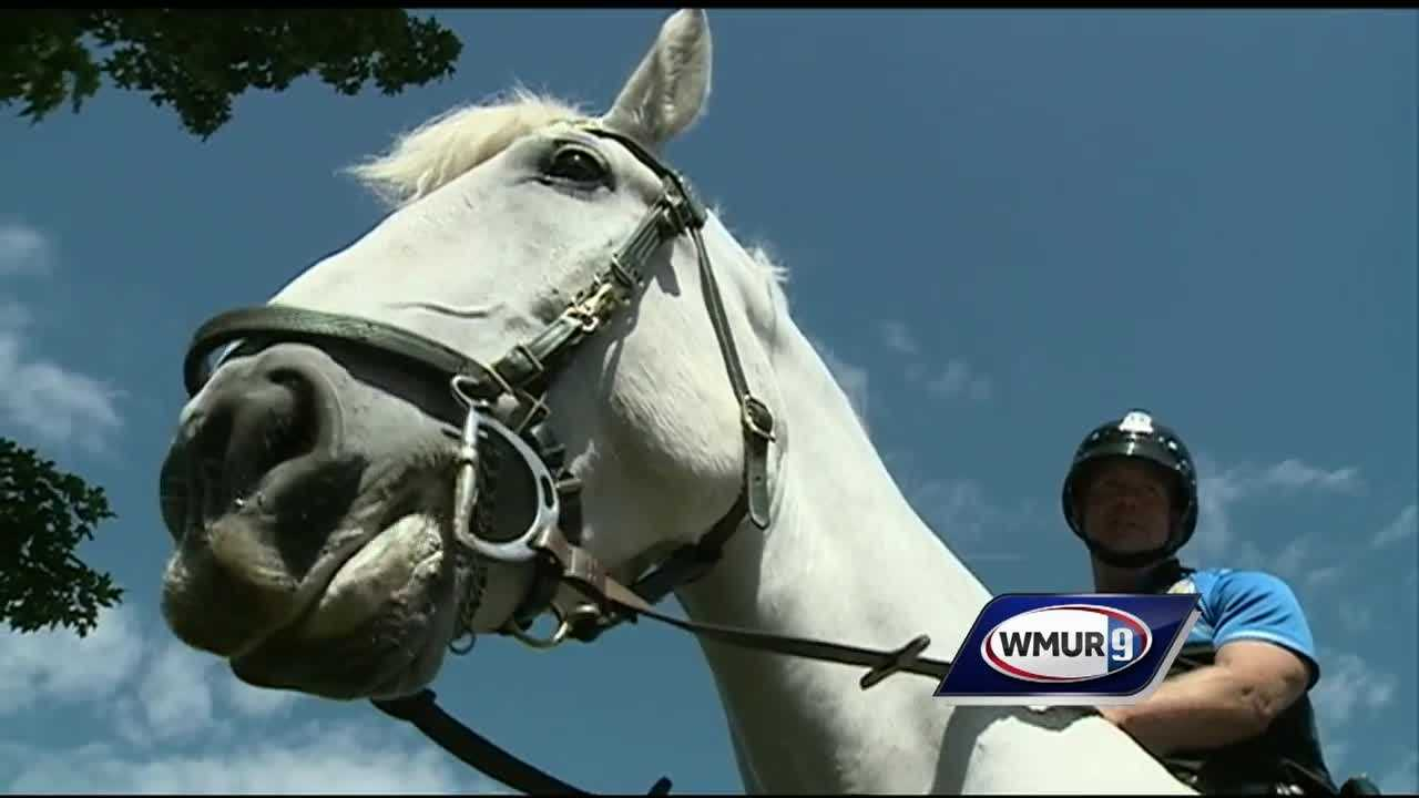 A longtime member of Dover's mounted police patrol is calling it a career.