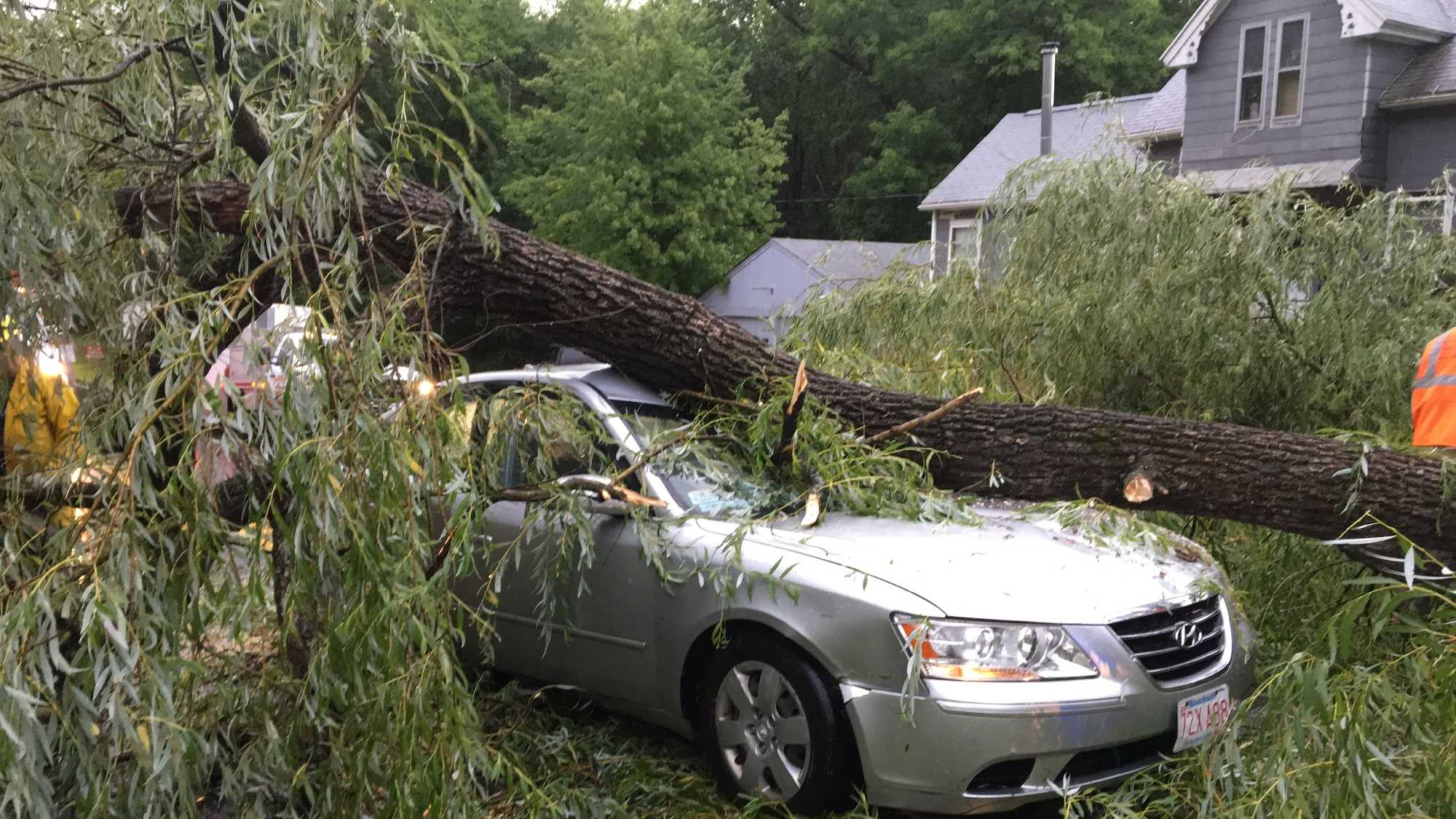 Storms knocked over a tree onto a car in Candia.