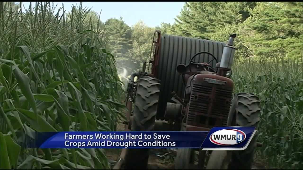 Farmers say just an inch of rain would be a big help.