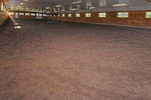 Here's a look inside the indoor horse track.