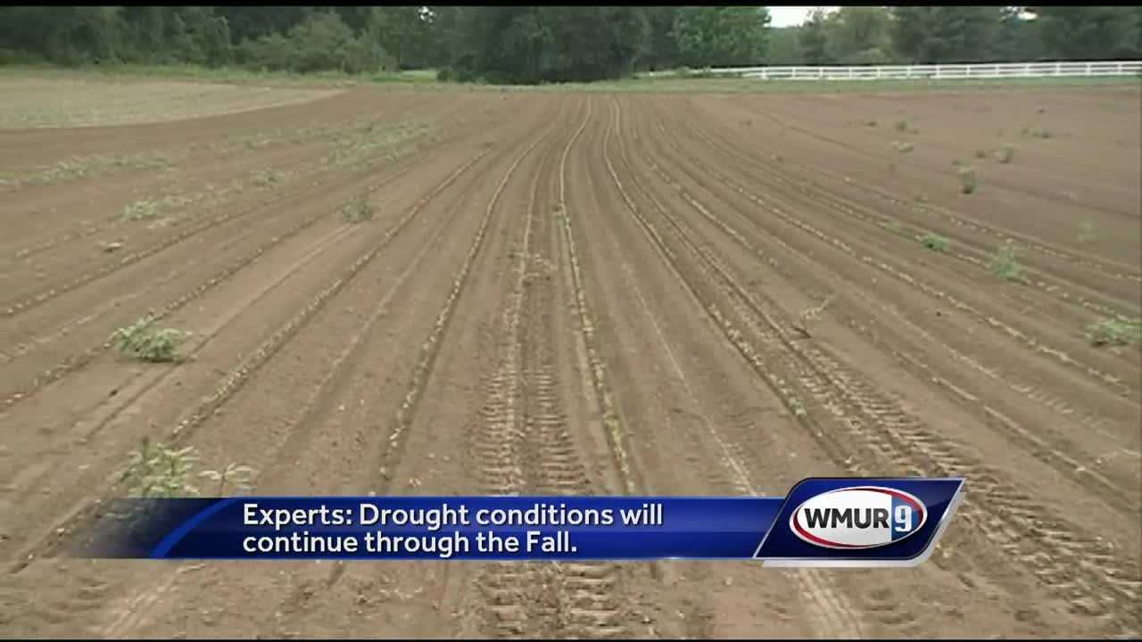 Parts of the state got some much-needed rainfall Monday, but experts said much more is needed to help alleviate severe drought conditions.