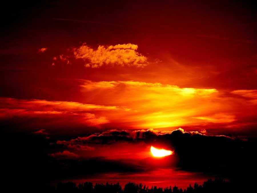 6. Sun (Heliophobia)