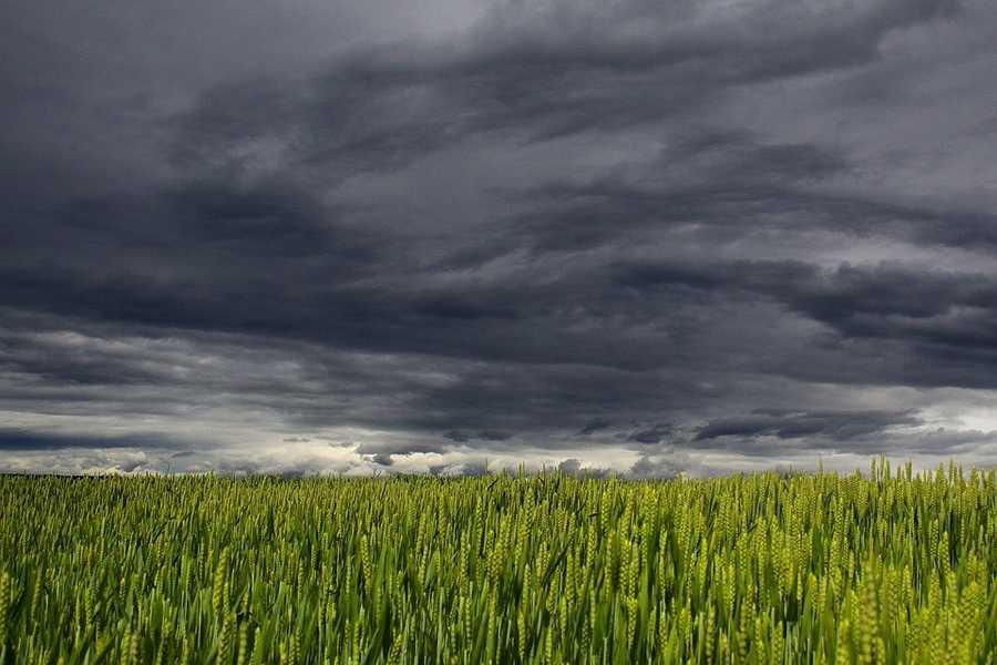 8. Clouds (Nephophobia)
