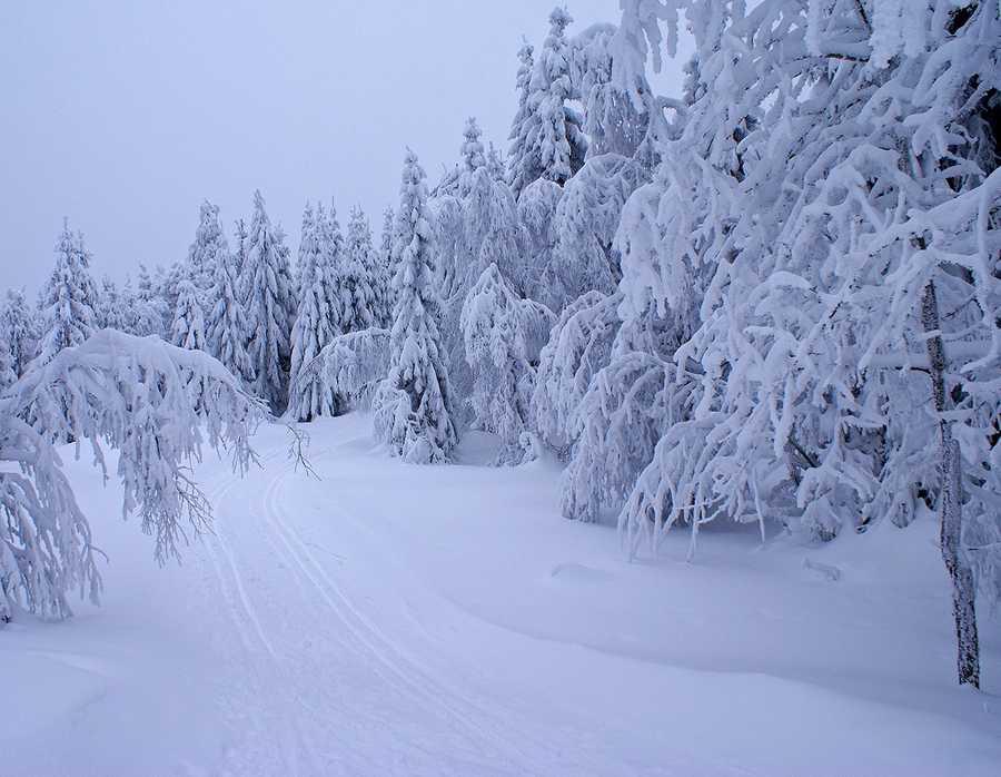 3. Snow (Chionophobia)
