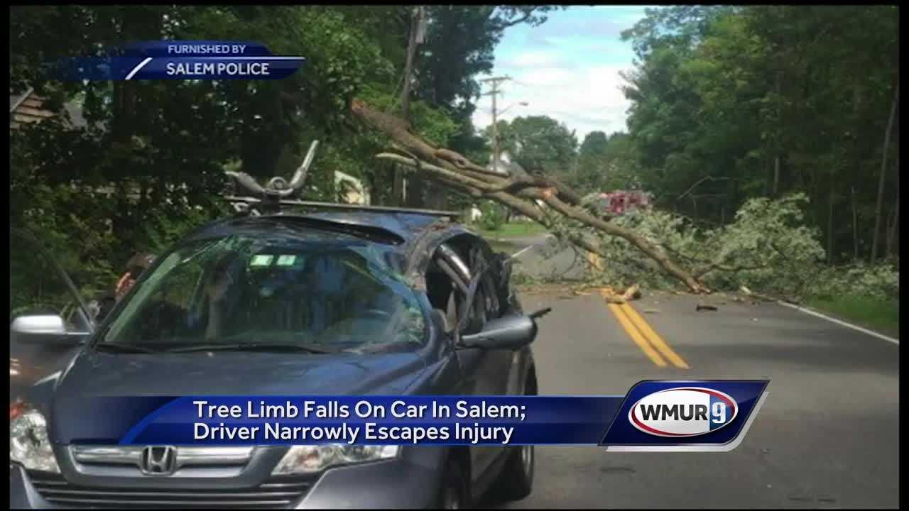 A driver avoided serious injury by ducking at the last second before a tree hit a vehicle on Wednesday afternoon in Salem.