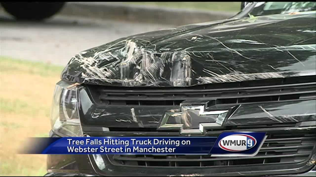 The truck was driving on Webster Street when the limb fell, hitting the front of the vehicle.