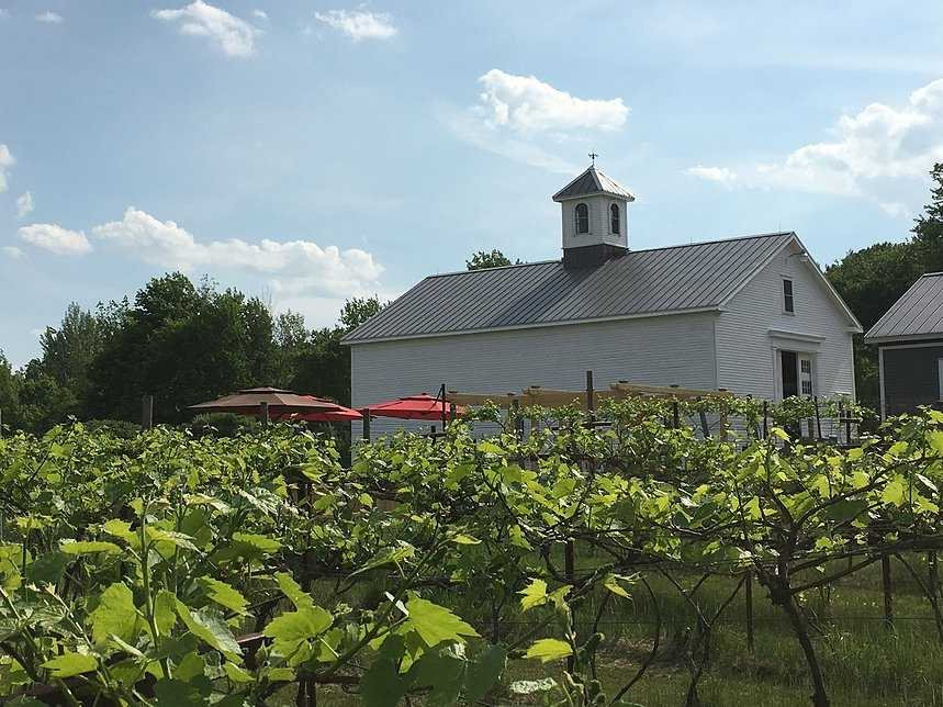 6. Appolo Vineyards in Derry
