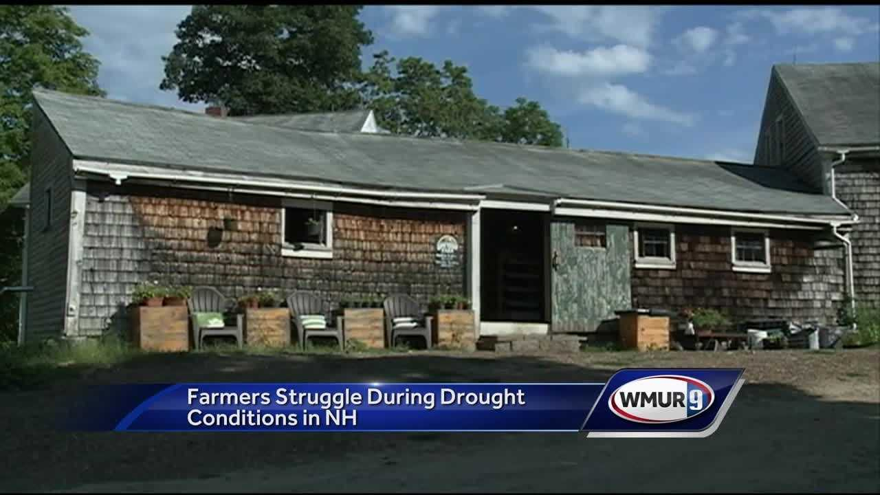 Farmers now eligible for drought relief assistance from the federal government are struggling to grow crops.