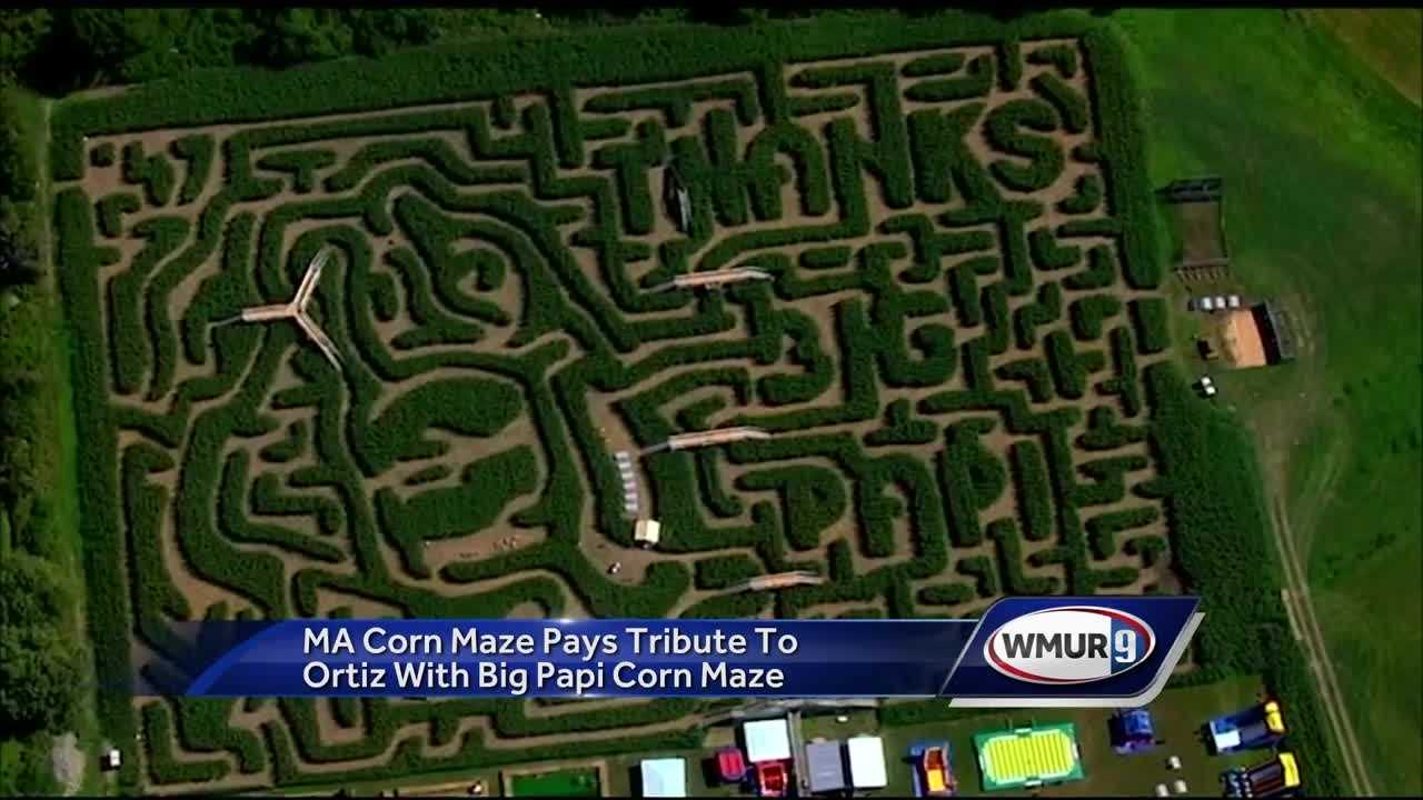 "A corn maze in Sterling, Massachusetts, features a message for the retiring slugger: ""Thank you Big Papi."""
