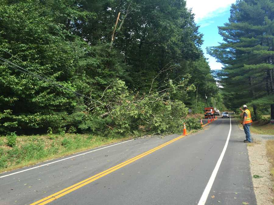 Weare was one of the towns hit hard by the storms. Pictured here is a tree down on Deering Center Road.